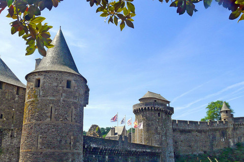 Fougère's wall