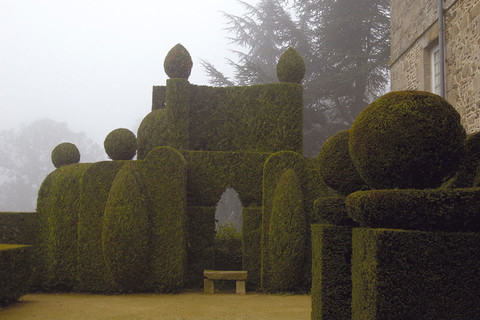Sculpted bushes and hedges in the Chateau de La Ballue's gardens